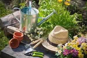 Garten Gardening