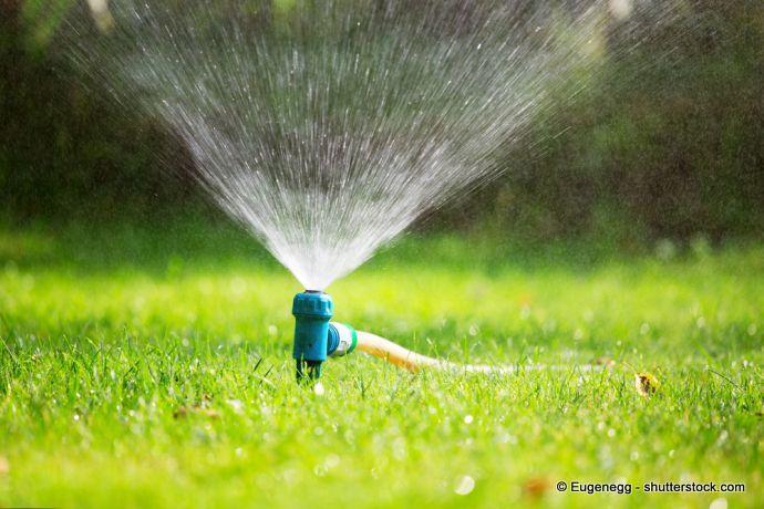 Rasen richtig bewässern