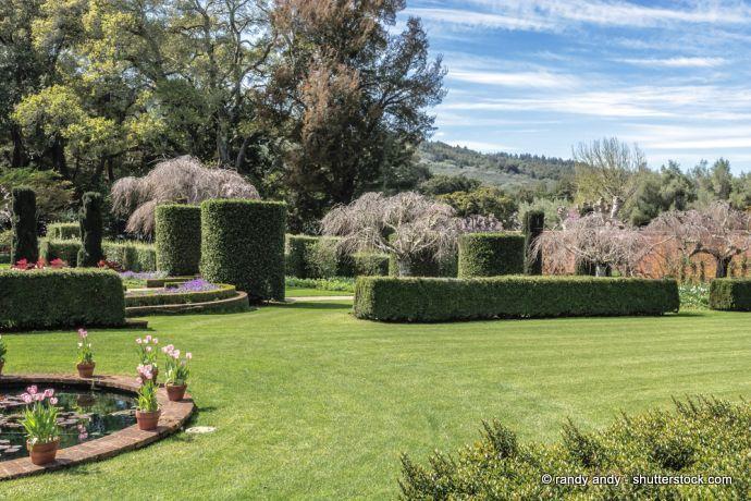 Zierrasen englischer Garten