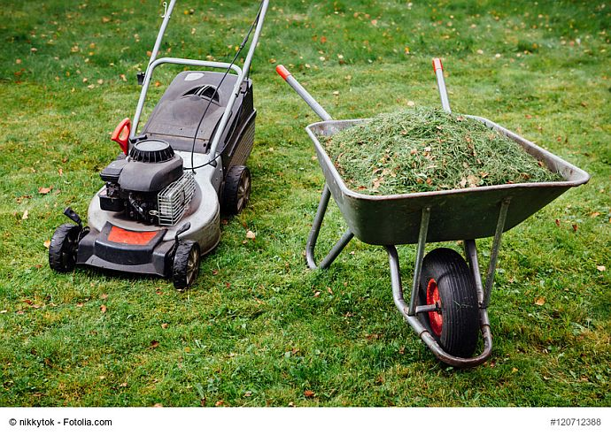 Rasenmäher neben Schubkarre mit Grünschnitt