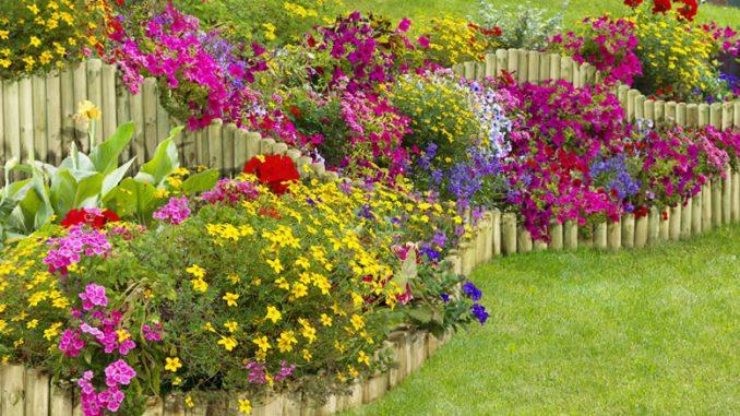 Rasenkanten aus Holzpalisaden | Bild: ediGarden