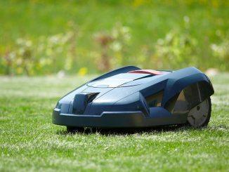 Mähroboter auf dem Rasen