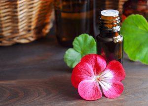 Geraniumöl enthält Geraniol