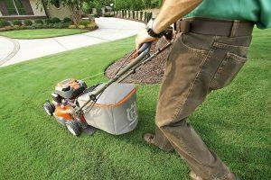 Kurzer Rasen mit Rasenmäher