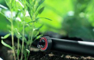 Tropfer und Tropfschlauch für das -Micro-Drip-System | Bild: Garden
