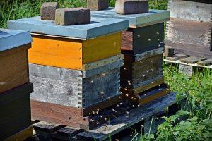 Bienenkisten übereinander