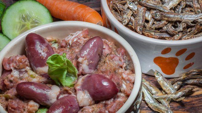 Hundefutter aus Fleisch, Fisch, Gemüse