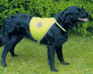 Warnweste für den Hund | Bild: Trixie