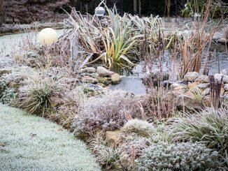 Garten im Winter | Bild: Andrea fotolia.com