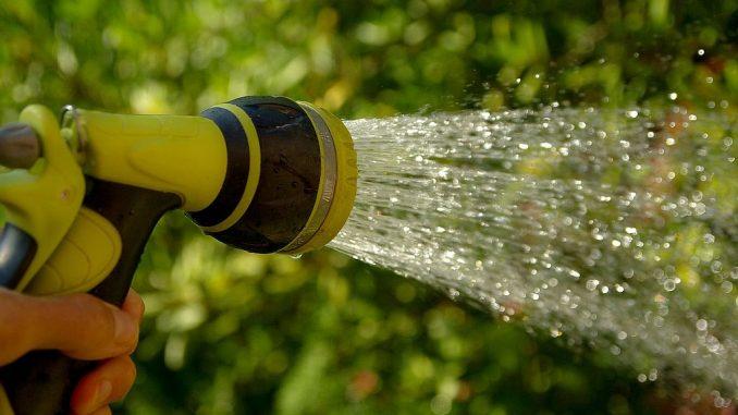 Brause am Wasserschlauch | Bild: jackmac34