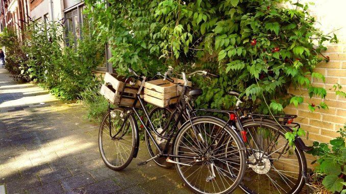 Zwei Lastenfahrräder mit Ladefläche vor und Kiste | Bild: MabelAmber