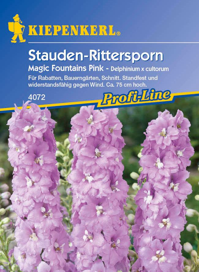 Rittersporn, Stauden Magic Fountains Pink von Kiepenkerl
